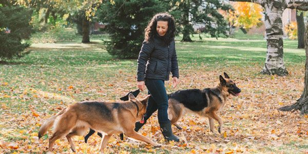 Souha walking with dogs